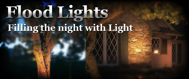 Buy outdoor flood lights for landscape lighting