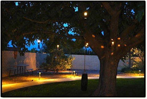 Low Voltage Landscape Lighting For Trees : Landscape lighting bk low voltage pinhole hanging