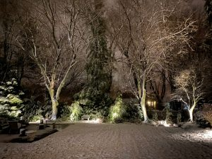 HandDadTV Winter Outdoor landscape lighting