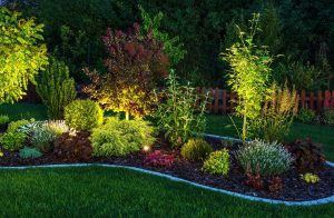 Illuminated garden by led lighting. backyard garden at night closeup photo - photo by Vision Green Landscape
